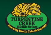 Turpentine Creek Big Cat Rescue